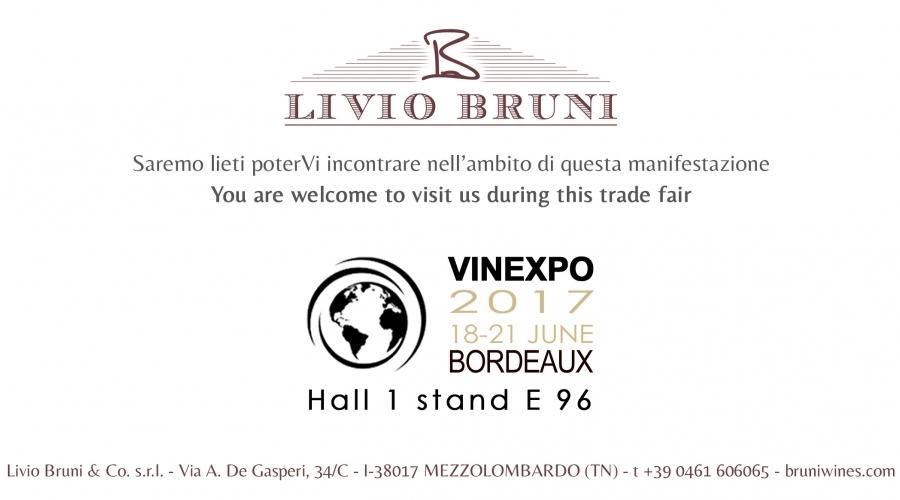 Vinexpo, Bordeaux 2017